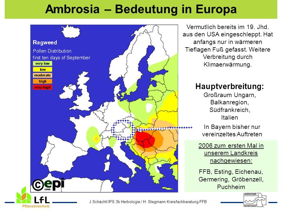 J.Schächtl IPS 3b Herbologie / H. Stegmann Kreisfachberatung FFB Ambrosia – Bedeutung in Europa Hauptverbreitung: Großraum Ungarn, Balkanregion, Südfr