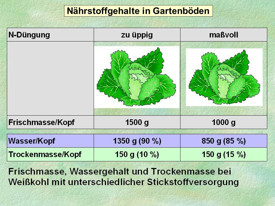 36 23 16 0 1 2 3 4 5 6 7 8 Vitamin C (mg/100 g Frischmasse) 0 5 10 15 20 25 30 35 40 Vitamin C (mg/Eissalat-Kopf) Einfluss der Kopfgröße von Eissalat auf den Vitamin C-Gehalt mittleres Kopfgewicht 7,6 3,6 1,9 470 g 640 g 840 g Nährstoffgehalte in Gartenböden