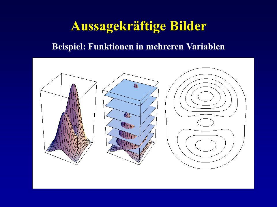 Aussagekräftige Bilder Beispiel: Funktionen in mehreren Variablen