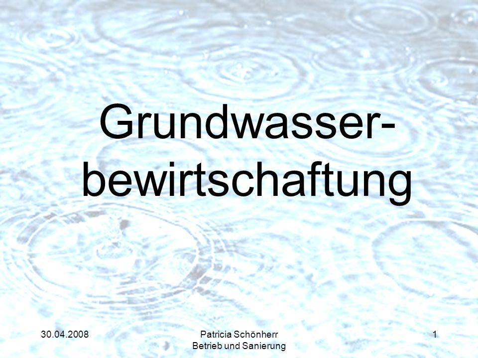 30.04.2008Patricia Schönherr Betrieb und Sanierung Grundwasser- bewirtschaftung 1