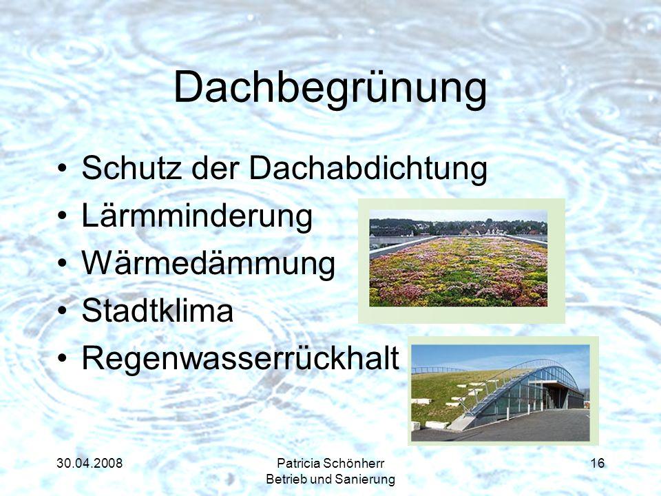 30.04.2008Patricia Schönherr Betrieb und Sanierung Dachbegrünung Schutz der Dachabdichtung Lärmminderung Wärmedämmung Stadtklima Regenwasserrückhalt 1