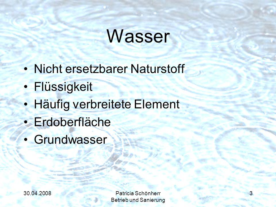 30.04.2008Patricia Schönherr Betrieb und Sanierung Wasser Nicht ersetzbarer Naturstoff Flüssigkeit Häufig verbreitete Element Erdoberfläche Grundwasse