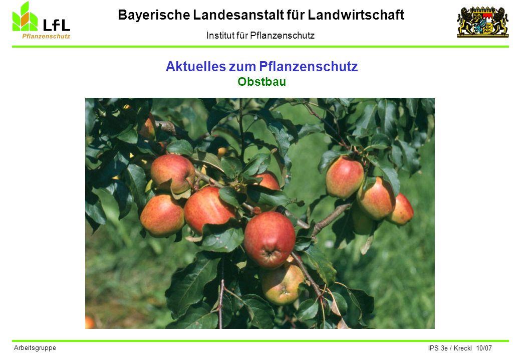 Bayerische Landesanstalt für Landwirtschaft Institut für Pflanzenschutz IPS 3e / Kreckl 10/07 Arbeitsgruppe Aktuelles zum Pflanzenschutz Obstbau