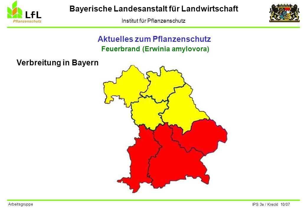 Bayerische Landesanstalt für Landwirtschaft Institut für Pflanzenschutz IPS 3e / Kreckl 10/07 Arbeitsgruppe Aktuelles zum Pflanzenschutz Kirschfruchtfliege (Rhagoletis cerasi) Bekämpfungsmöglichkeiten Eine direkte, chemische Bekämpfung ist nicht möglich.