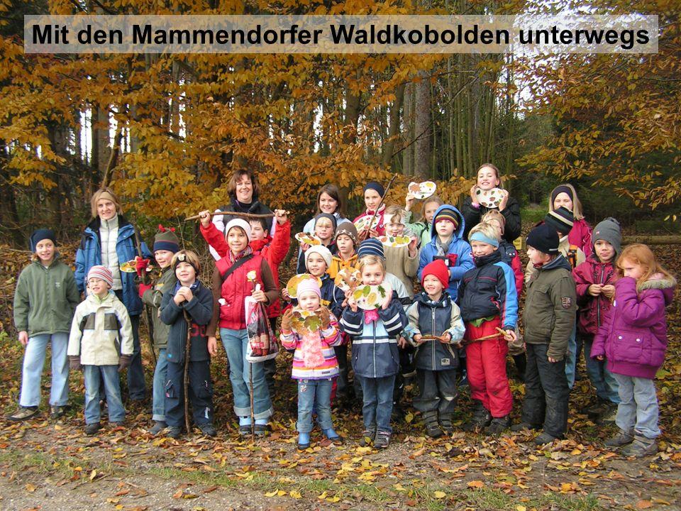 Mit den Mammendorfer Waldkobolden unterwegs