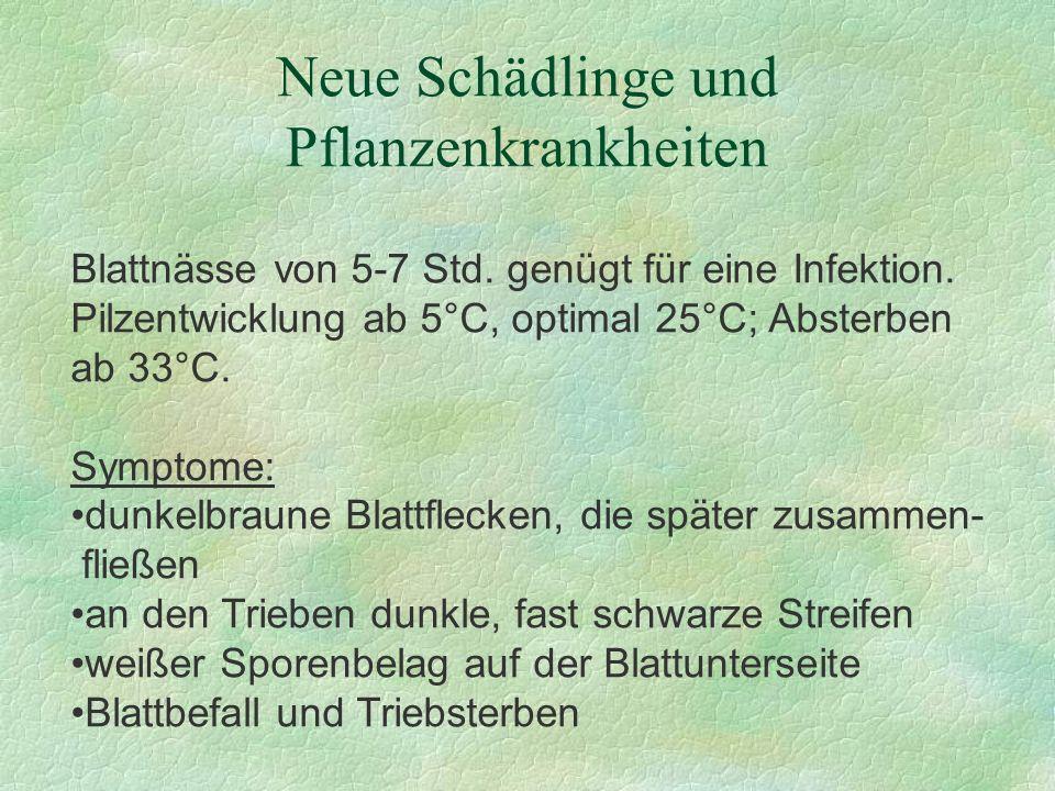 Neue Schädlinge und Pflanzenkrankheiten Blattnässe von 5-7 Std. genügt für eine Infektion. Pilzentwicklung ab 5°C, optimal 25°C; Absterben ab 33°C. Sy