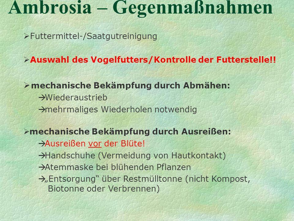 Ambrosia – Gegenmaßnahmen Futtermittel-/Saatgutreinigung Auswahl des Vogelfutters/Kontrolle der Futterstelle!! mechanische Bekämpfung durch Abmähen: W