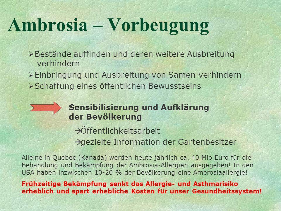 Ambrosia – Vorbeugung Bestände auffinden und deren weitere Ausbreitung verhindern Einbringung und Ausbreitung von Samen verhindern Schaffung eines öff
