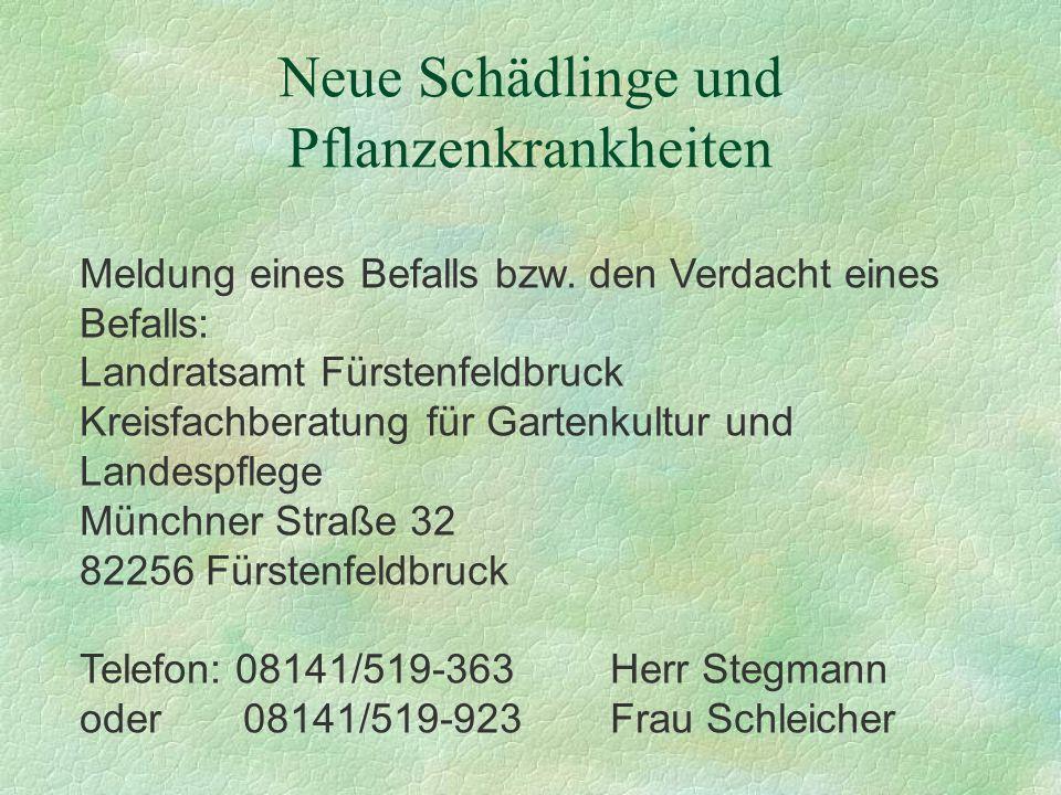 Neue Schädlinge und Pflanzenkrankheiten Meldung eines Befalls bzw. den Verdacht eines Befalls: Landratsamt Fürstenfeldbruck Kreisfachberatung für Gart