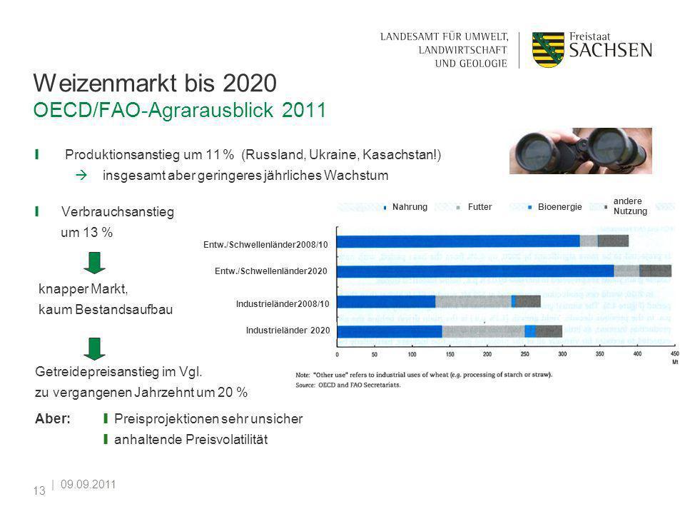 | 09.09.2011 13 Weizenmarkt bis 2020 OECD/FAO-Agrarausblick 2011 Produktionsanstieg um 11 % (Russland, Ukraine, Kasachstan!) insgesamt aber geringeres