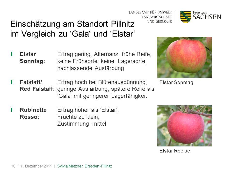 | 1. Dezember 2011 | Sylvia Metzner, Dresden-Pillnitz10 Einschätzung am Standort Pillnitz im Vergleich zu Gala und Elstar ElstarErtrag gering, Alterna