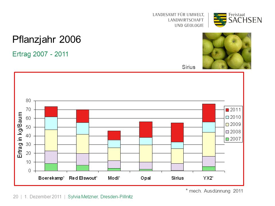 | 1. Dezember 2011 | Sylvia Metzner, Dresden-Pillnitz20 Pflanzjahr 2006 Ertrag 2007 - 2011 Sirius * mech. Ausdünnung 2011