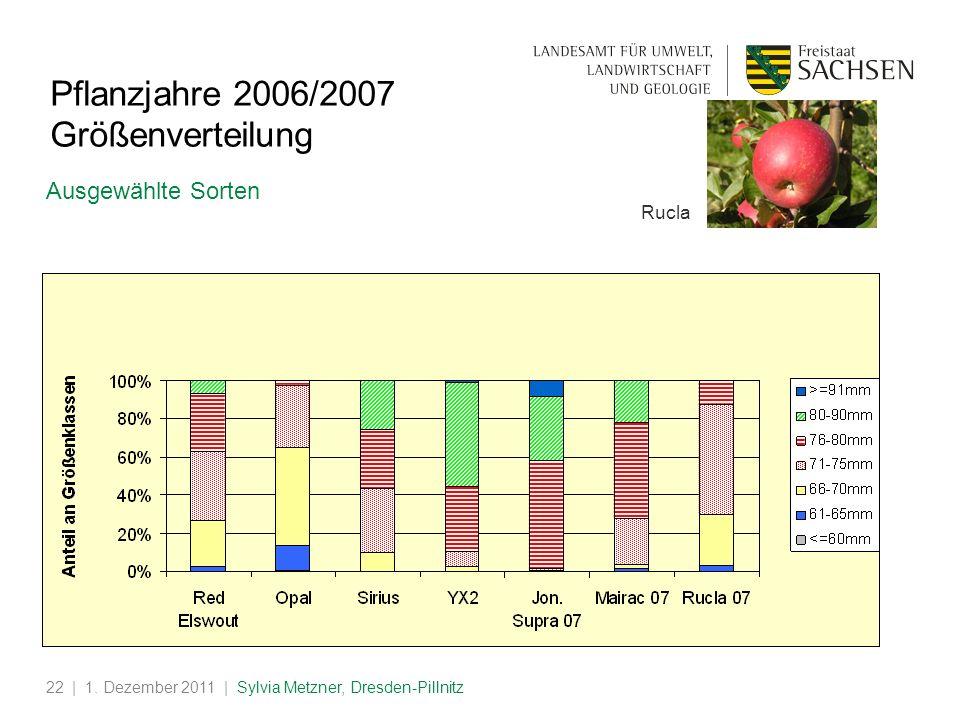 | 1. Dezember 2011 | Sylvia Metzner, Dresden-Pillnitz22 Pflanzjahre 2006/2007 Größenverteilung Ausgewählte Sorten Rucla