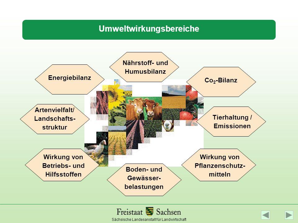 Sächsische Landesanstalt für Landwirtschaft Umweltwirkungsbereiche Nährstoff- und Humusbilanz Wirkung von Pflanzenschutz- mitteln Boden- und Gewässer-