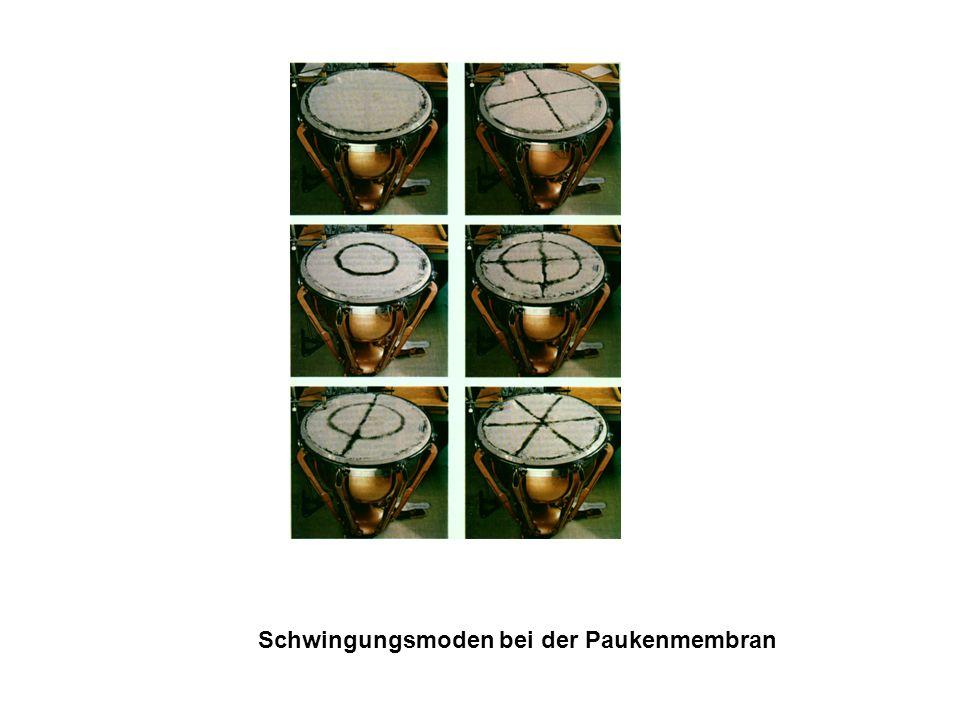 Schwingungsmoden einer Kreisplatte