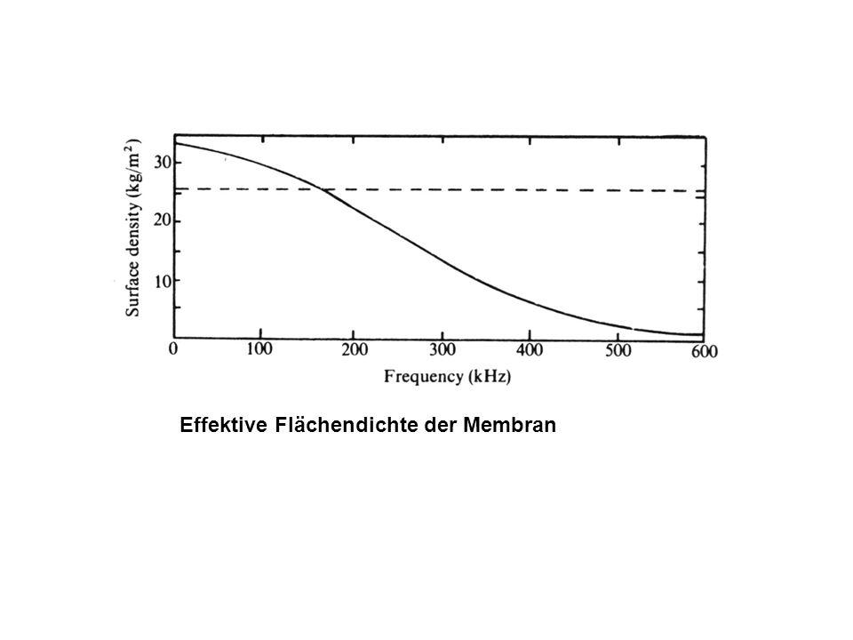 Effektive Flächendichte der Membran