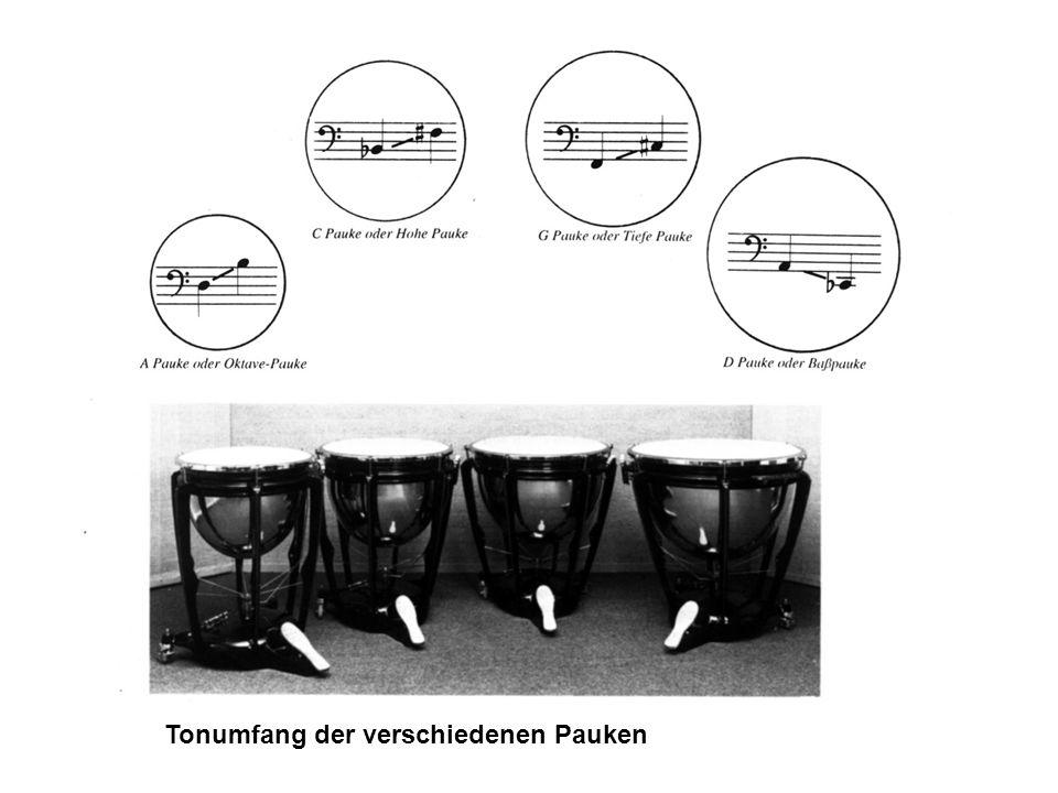 Schwingungsmoden eines rechteckigen Stabes Schwingungsmoden eines Marimbastabes