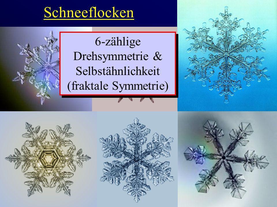 Schneeflocken 6-zählige Drehsymmetrie & Selbstähnlichkeit (fraktale Symmetrie)