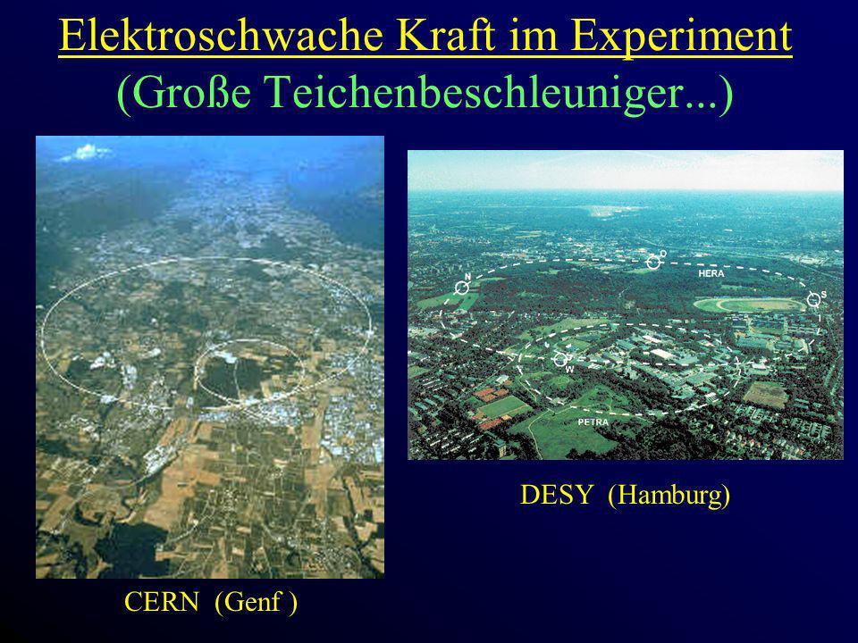Elektroschwache Kraft im Experiment (Große Teichenbeschleuniger...) CERN (Genf ) DESY (Hamburg)