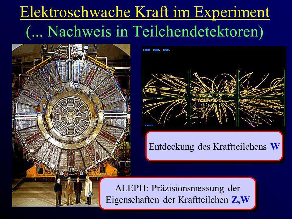Elektroschwache Kraft im Experiment (... Nachweis in Teilchendetektoren) Entdeckung des Kraftteilchens W ALEPH: Präzisionsmessung der Eigenschaften de