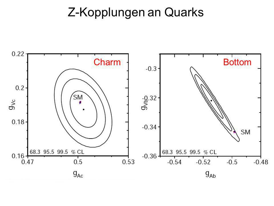 Z-Kopplungen an Quarks CharmBottom