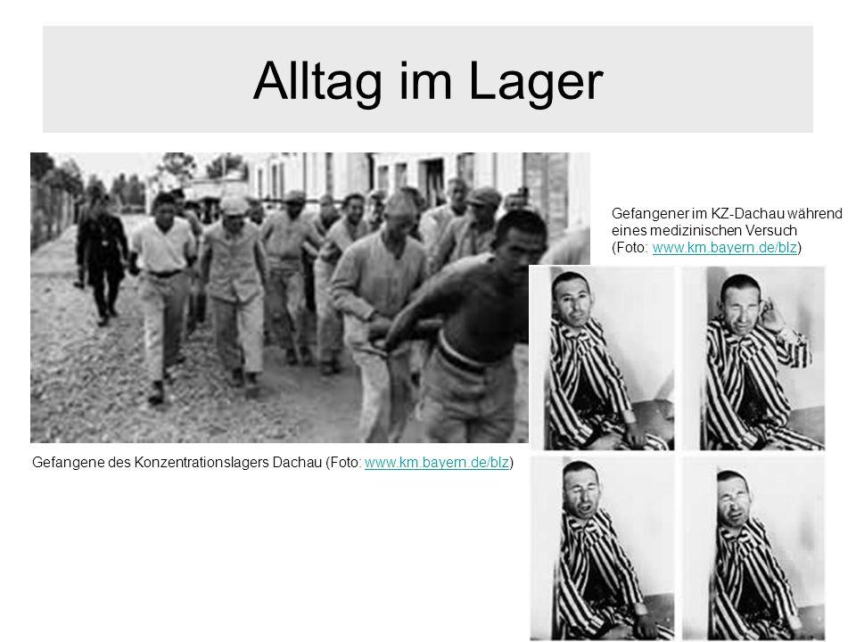 Alltag im Lager Gefangene des Konzentrationslagers Dachau (Foto: www.km.bayern.de/blz)www.km.bayern.de/blz Gefangener im KZ-Dachau während eines mediz