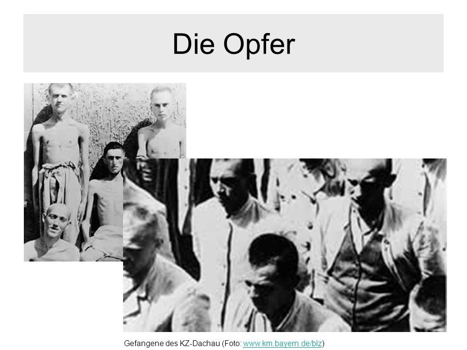 Die Opfer Gefangene des KZ-Dachau (Foto: www.km.bayern.de/blz)www.km.bayern.de/blz