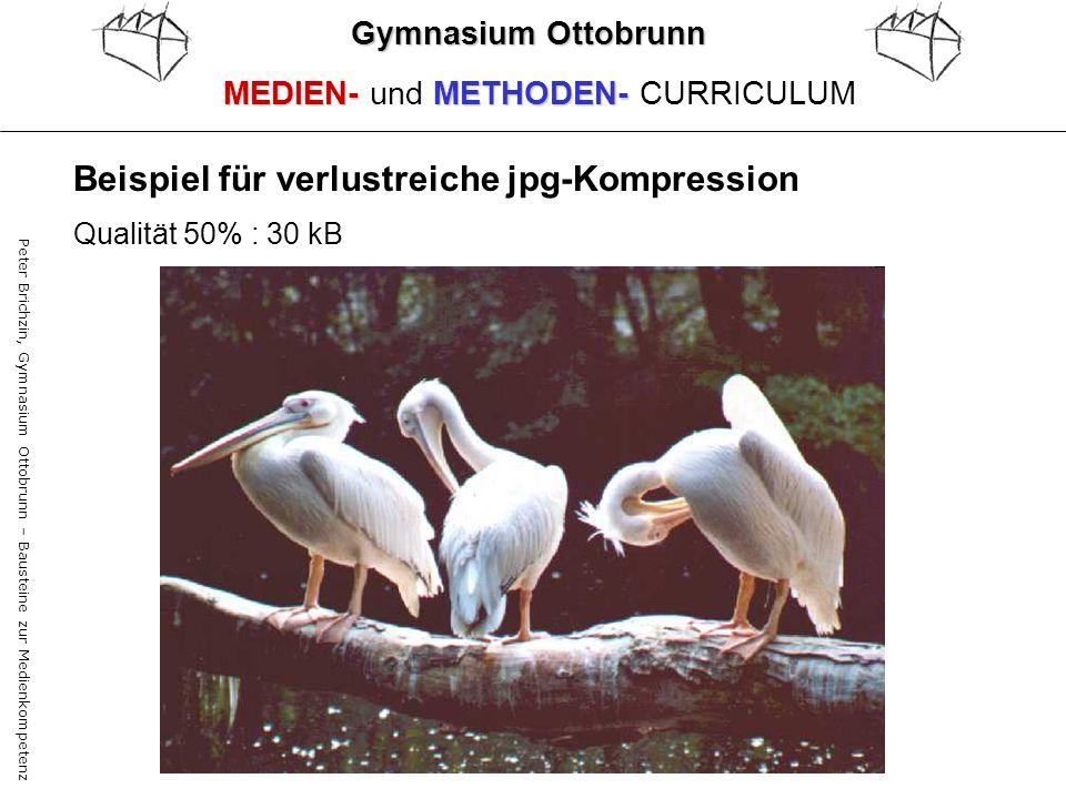Peter Brichzin, Gymnasium Ottobrunn – Bausteine zur Medienkompetenz Qualität 50% : 30 kB Gymnasium Ottobrunn MEDIEN-METHODEN- MEDIEN- und METHODEN- CU