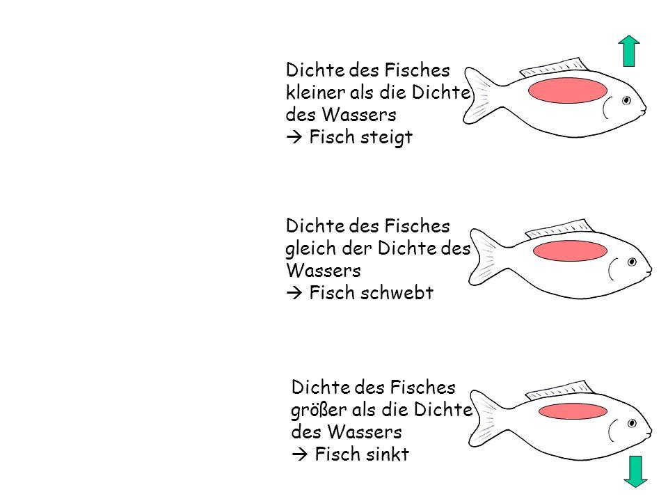 Dichte des Fisches kleiner als die Dichte des Wassers Fisch steigt Dichte des Fisches gleich der Dichte des Wassers Fisch schwebt Dichte des Fisches g