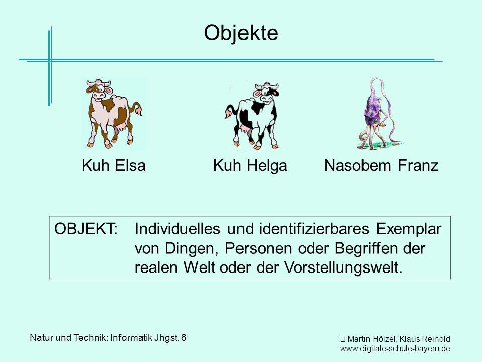 Martin Hölzel, Klaus Reinold www.digitale-schule-bayern.de Natur und Technik: Informatik Jhgst. 6 Objekte Kuh Elsa Kuh Helga Nasobem Franz OBJEKT:Indi