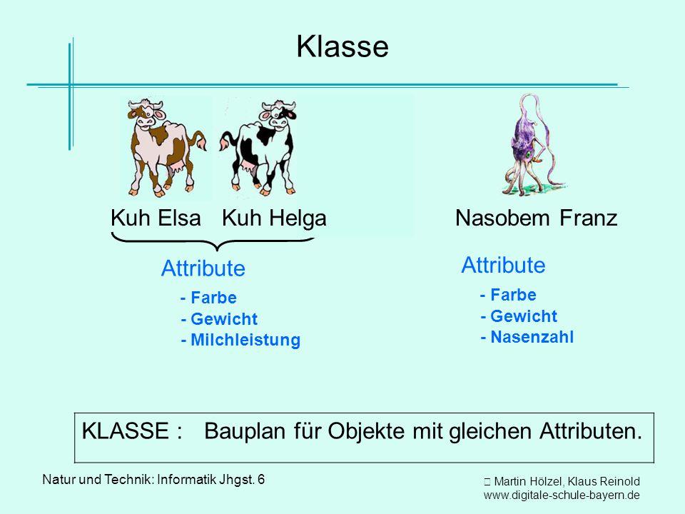 Martin Hölzel, Klaus Reinold www.digitale-schule-bayern.de Natur und Technik: Informatik Jhgst. 6 Klasse Kuh Elsa Kuh Helga Nasobem Franz Kuh Helga At