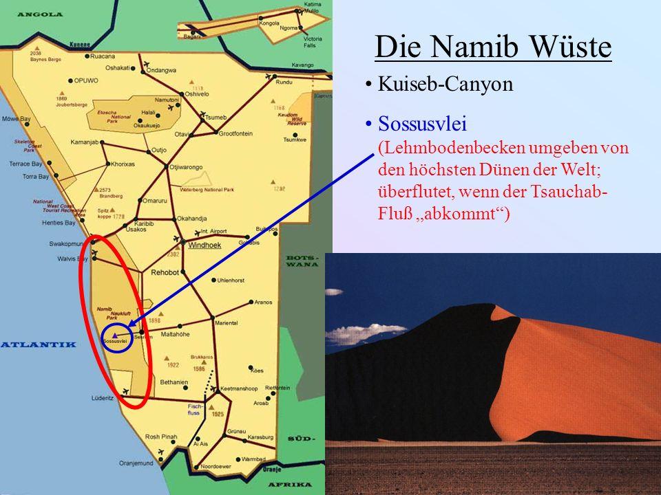 Die Namib Wüste Kuiseb-Canyon Sossusvlei (Lehmbodenbecken umgeben von den höchsten Dünen der Welt; überflutet, wenn der Tsauchab- Fluß abkommt)