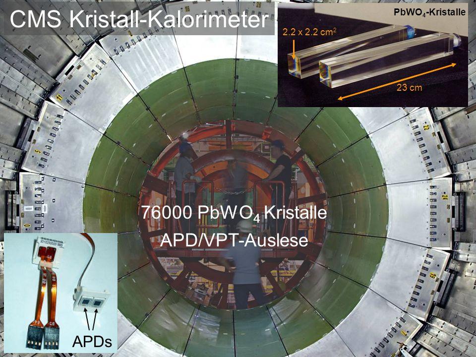 CMS Kristall-Kalorimeter 76000 PbWO 4 Kristalle APD/VPT-Auslese 2.2 x 2.2 cm 2 23 cm PbWO 4 -Kristalle APDs