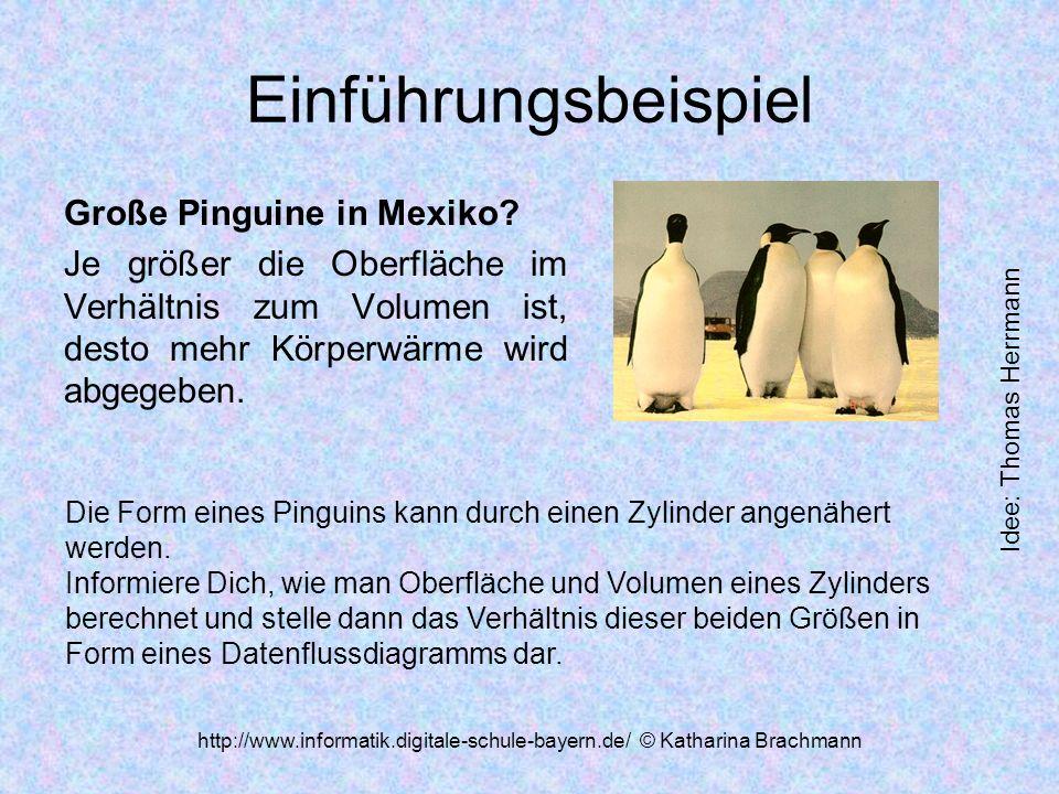 http://www.informatik.digitale-schule-bayern.de/ © Katharina Brachmann Einführungsbeispiel Große Pinguine in Mexiko.