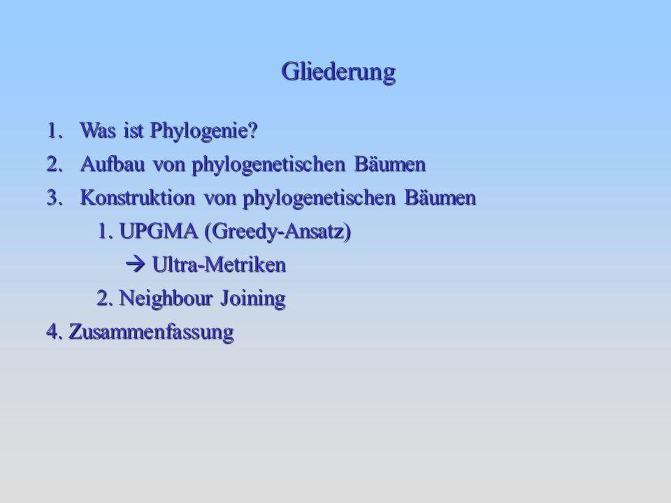 Phylogenie beschäftigt sich mit der Verwandtschaft zwischen Spezies Baumartige Darstellung der Verwandschaftsgrade Klassifizierung hier unter morphologischen Gesichtspunkten wie z.B.