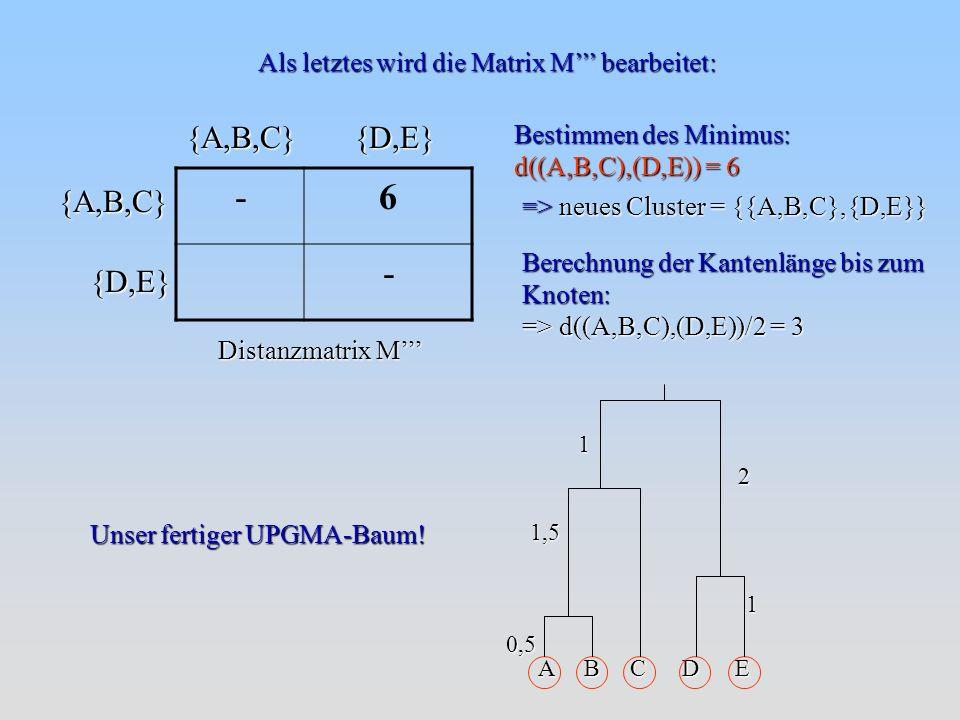 Bestimmen des Minimus: d((A,B,C),(D,E)) = 6 => neues Cluster = {{A,B,C},{D,E}} Berechnung der Kantenlänge bis zum Knoten: => d((A,B,C),(D,E))/2 = 3 Als letztes wird die Matrix M bearbeitet: {A,B,C}{D,E} Distanzmatrix M {D,E}{A,B,C} -6 - Unser fertiger UPGMA-Baum.