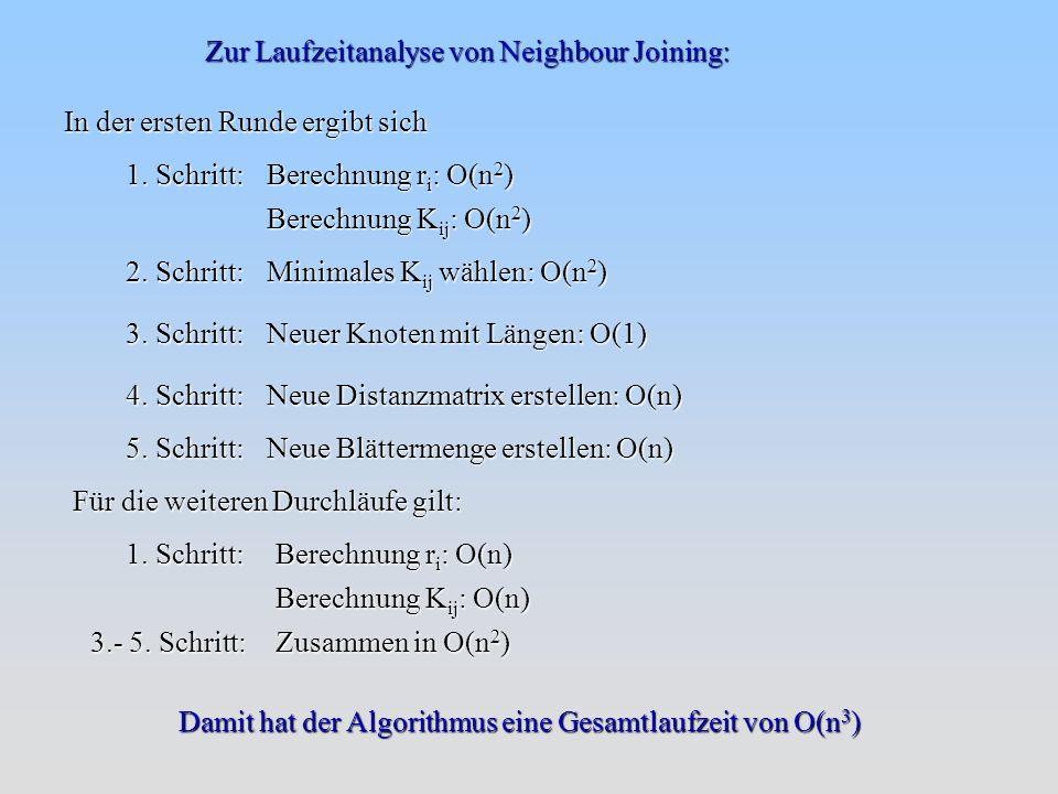 Zur Laufzeitanalyse von Neighbour Joining: In der ersten Runde ergibt sich 1.