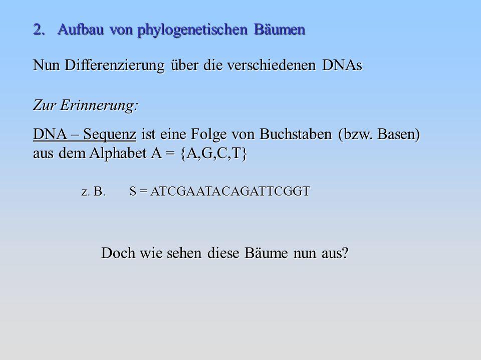 Nun Differenzierung über die verschiedenen DNAs Zur Erinnerung: DNA – Sequenz ist eine Folge von Buchstaben (bzw.