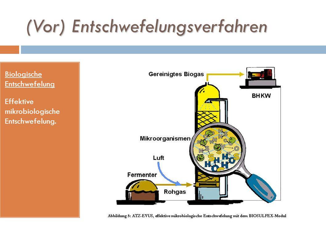 (Vor) Entschwefelungsverfahren Biologische Entschwefelung Effektive mikrobiologische Entschwefelung.