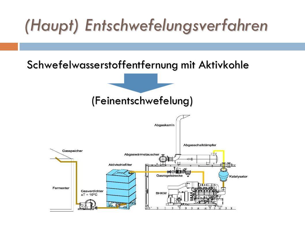 (Haupt) Entschwefelungsverfahren Schwefelwasserstoffentfernung mit Aktivkohle (Feinentschwefelung) (Feinentschwefelung)