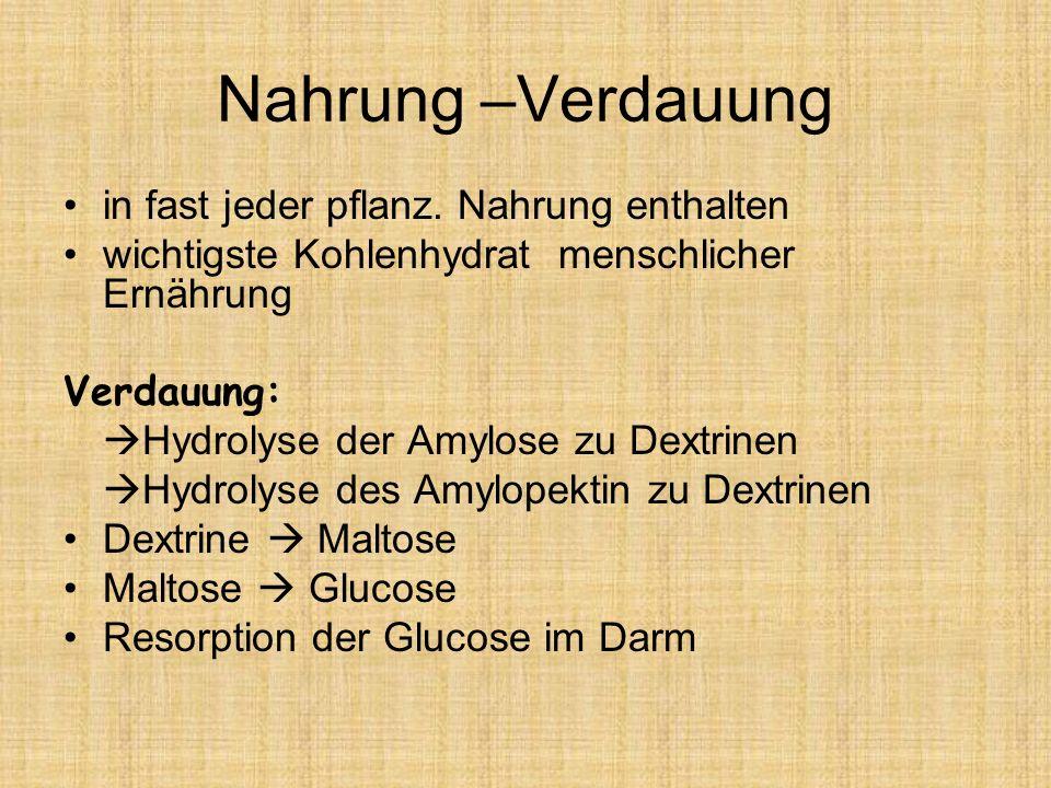 Nahrung –Verdauung in fast jeder pflanz. Nahrung enthalten wichtigste Kohlenhydrat menschlicher Ernährung Verdauung: Hydrolyse der Amylose zu Dextrine