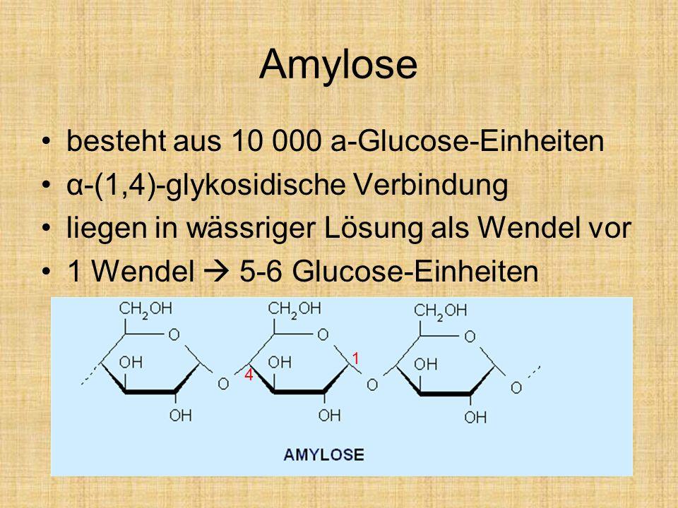 Amylose besteht aus 10 000 a-Glucose-Einheiten α-(1,4)-glykosidische Verbindung liegen in wässriger Lösung als Wendel vor 1 Wendel 5-6 Glucose-Einheit