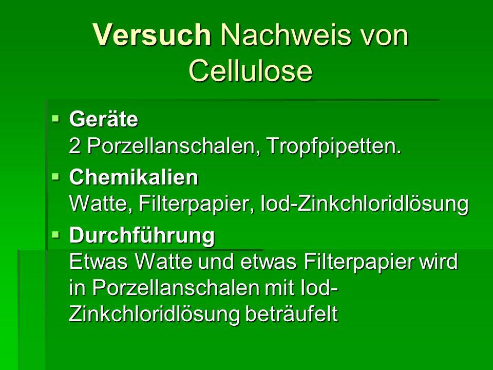 Versuch Nachweis von Cellulose Geräte 2 Porzellanschalen, Tropfpipetten. Geräte 2 Porzellanschalen, Tropfpipetten. Chemikalien Watte, Filterpapier, Io
