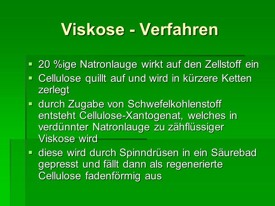 Viskose - Verfahren 20 %ige Natronlauge wirkt auf den Zellstoff ein 20 %ige Natronlauge wirkt auf den Zellstoff ein Cellulose quillt auf und wird in k