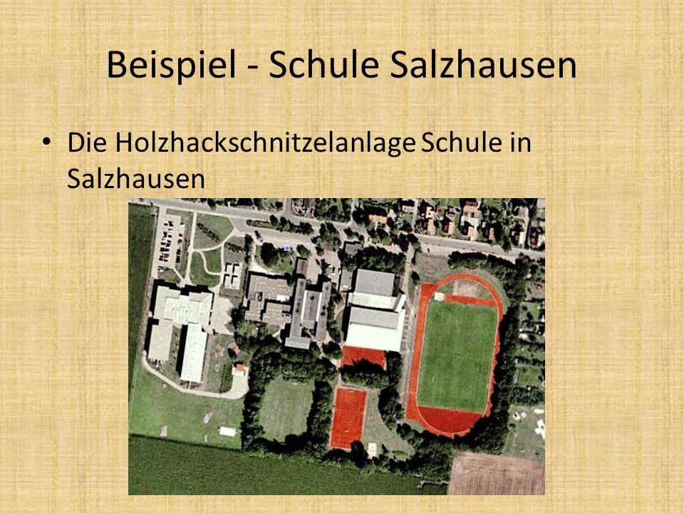 Beispiel - Schule Salzhausen Die Holzhackschnitzelanlage Schule in Salzhausen