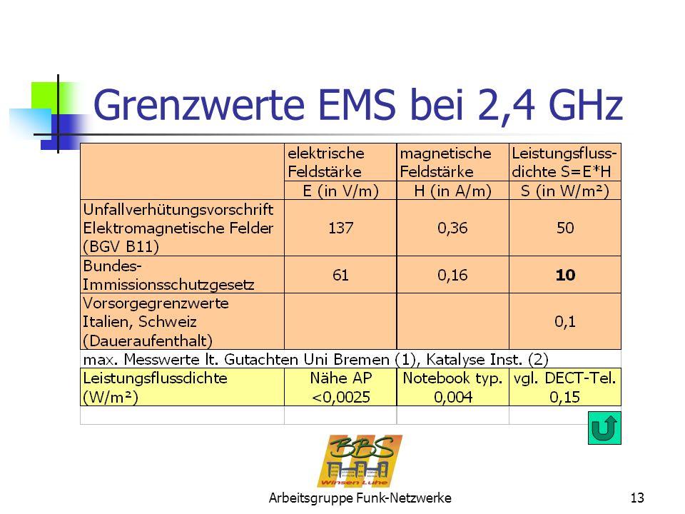 Arbeitsgruppe Funk-Netzwerke13 Grenzwerte EMS bei 2,4 GHz