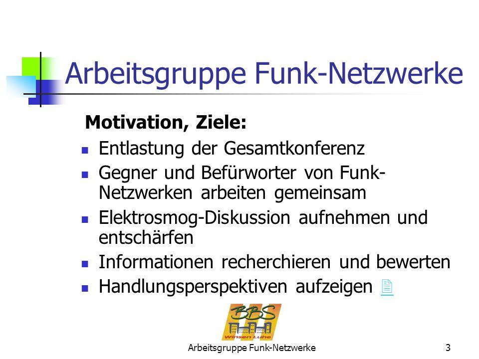 Arbeitsgruppe Funk-Netzwerke3 Entlastung der Gesamtkonferenz Gegner und Befürworter von Funk- Netzwerken arbeiten gemeinsam Elektrosmog-Diskussion auf