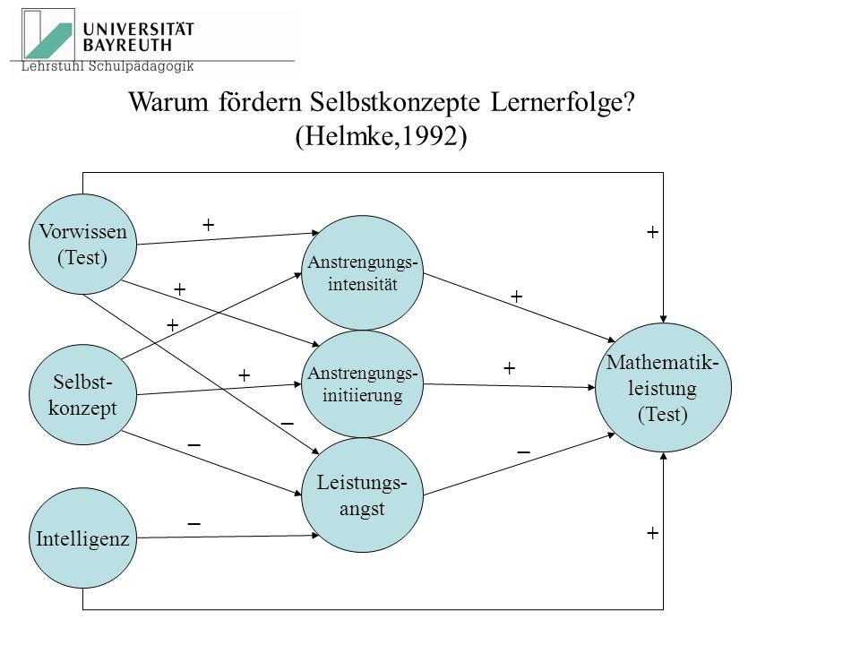 Warum fördern Selbstkonzepte Lernerfolge? (Helmke,1992) Vorwissen (Test) Selbst- konzept Intelligenz Leistungs- angst Anstrengungs- initiierung Anstre