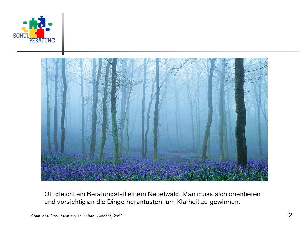 Staatliche Schulberatung München, Ulbricht, 2013 2 Oft gleicht ein Beratungsfall einem Nebelwald. Man muss sich orientieren und vorsichtig an die Ding