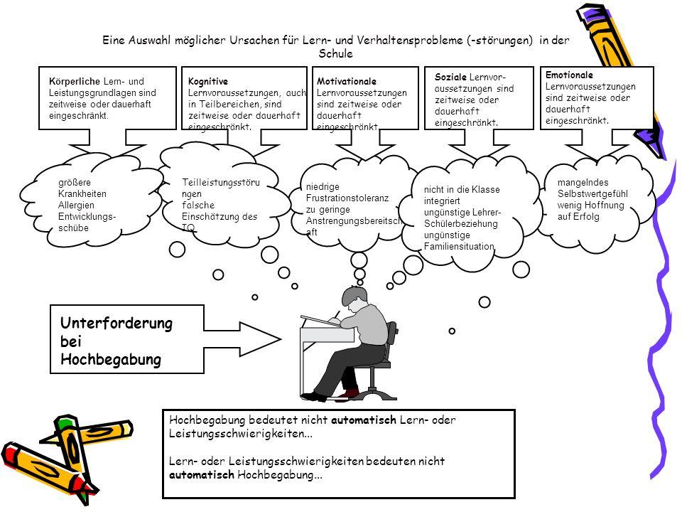 Körperliche Lern- und Leistungsgrundlagen sind zeitweise oder dauerhaft eingeschränkt. Kognitive Lernvoraussetzungen, auch in Teilbereichen, sind zeit